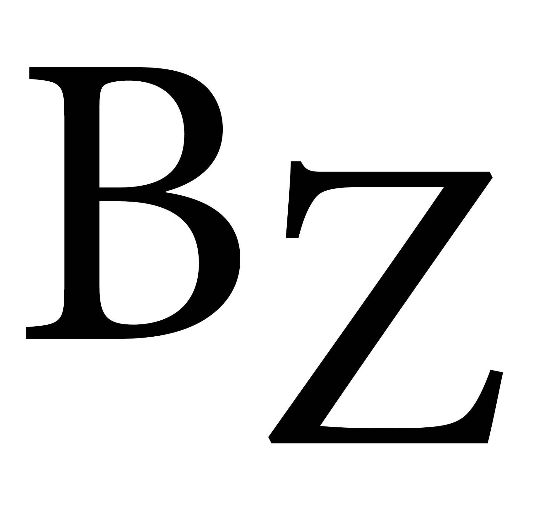 butzbacher-zeitung.de